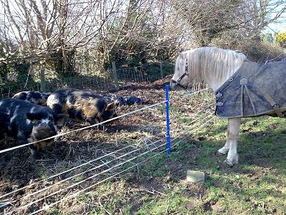 Ted meets the Kune Kunes - 17 March 2008